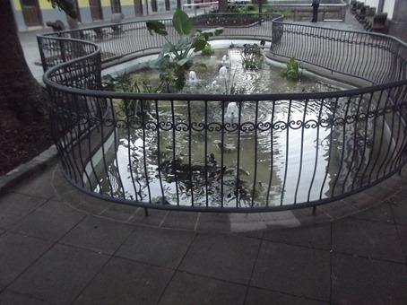 estanque2